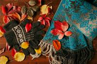 Gloves, scarf and colorful autumnal foliage
