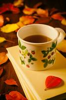 Cup of tea, books and colorful autumnal foliage