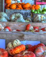 Gourds Of Autumn