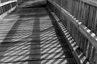 Boardwalk Shadows Black and White