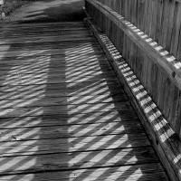 Boardwalk Shadows Black and White by Karen Adams