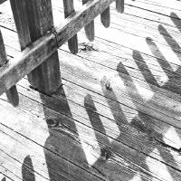 Washed Out Boardwalk Shadows  by Karen Adams