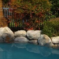 By the Pool - PA152350 by Richard Thomas