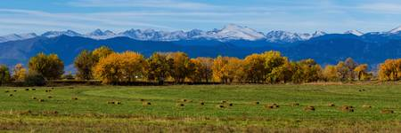 Colorado Rocky Mountain Autumn Hay Harvest Pano