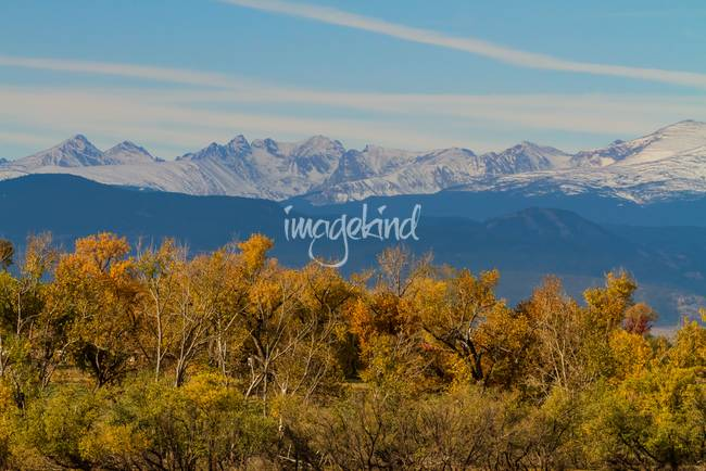 Colorful Trees and Majestic Mountain Peaks