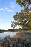 'For We All Live Down stream'  N.Platte Rv_Wyoming
