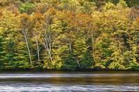 Autumn On The Madawaska River