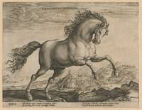 Bronco, Hendrick Goltzius, after Stradanus, 1577 -