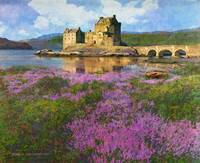 heather at eilean donan, scotland