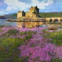 heather at eilean donan, scotland by r christopher vest