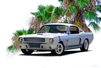 1966 Shelby Mustang G.T. 350 II