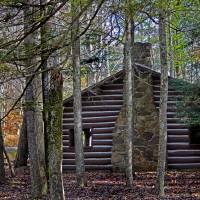 Cabin in the Woods by Karen Adams