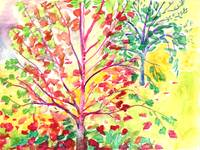 Autumn Tree Study 5