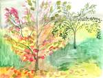 Autumn Tree Study 3 by Jennifer Lommers