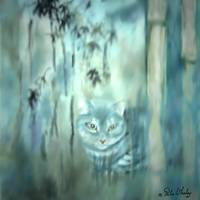 CAT  MEDITATIONG  /  RITA WHALEY by Rita Whaley