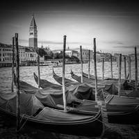 VENICE Grand Canal and St Mark's Campanile | Monoc