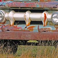 Truck In the Grass Art Prints & Posters by Lynda Lehmann
