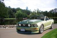 Ford Mustang GT Convertible 'Pony Boy' II