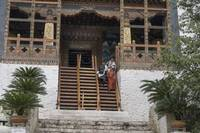 Steep Stairs at Punakha Dzong