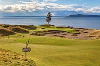 Chambers Bay Golf Course, Hole #15, Lone Fir