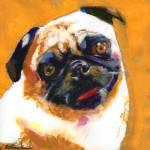 Pug Blueboy orange by RD Riccoboni