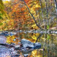 Peak Fall Foliage at the Black River, New Jersey Art Prints & Posters by George Oze