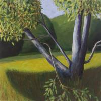 Tree in Meadow Art Prints & Posters by michael pfleghaar