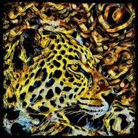 Leopard Art Prints & Posters by David McKinney