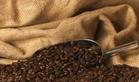 Closeup of coffee beans scoop mood lighting