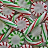 Peppermint Mess Art Prints & Posters by Through The Split Window