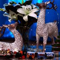 Christmas Decor by Richard Thomas