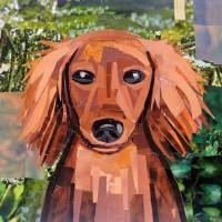 """""""The Long Haired Doxie"""" by megancoyle"""