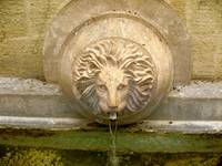 Lion Fountain