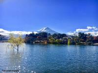 The majestic mount Fuji