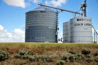 Washtucna Grain Growers