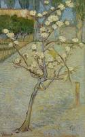 Small Pear Tree in Blossom Arles, April 1888 Vince