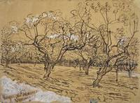 Provençal Orchard Arles, March - April 1888 Vincen