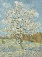 The Pink Peach Tree Arles, April - May 1888 Vincen