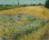 Wheatfield Arles, June 1888 Vincent van Gogh (1853