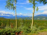 Maligne Valley Scenic Lookout