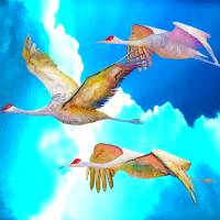 Three Cranes Art Prints & Posters by Paul Simone