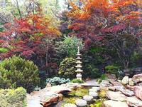 Japanese Garden With Pagoda