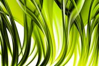 Abstract green grass look