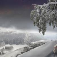 Snowy Stroll Art Prints & Posters by Igor Zenin