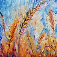 7 Fruits of Israel Series - Wheat