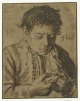 Boy picking off Fleas, half length, Cornelis Saftl