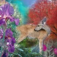 Deer, Red Tree, Flowers by Faye Cummings