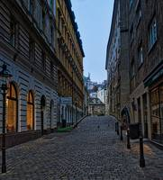 Vienna Early Morning Cobblestones
