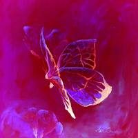 Purple-pink butterflies wall art