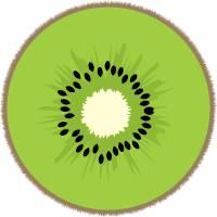 Kiwki Fruit Green Black Brown Art Prints & Posters by Valerie Waters